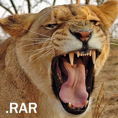 чем открыть rar